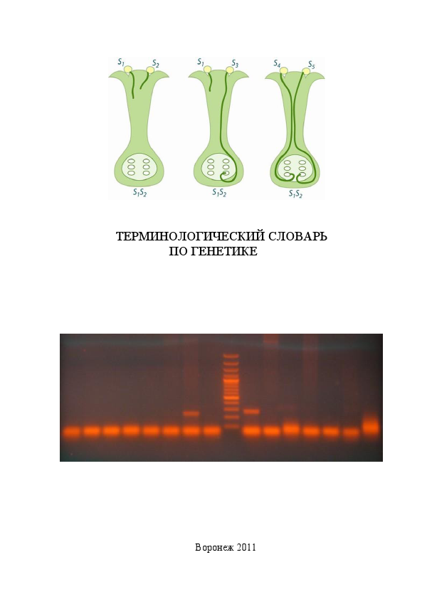 Терминологический словарь по генетике